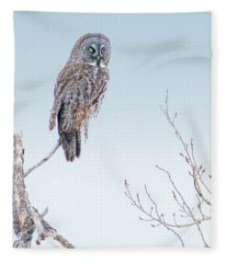 Majestic Great Gray Owl Fleece Blanket