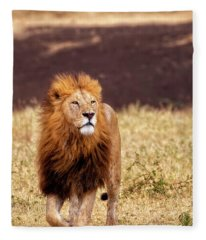 Majesty Fleece Blanket
