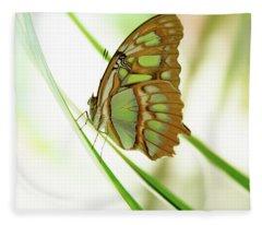 Malachites Butterfly Fleece Blanket