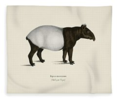 Malayan Tapir  Equus Montanus  Illustrated By Charles Dessalines D' Orbigny  1806-1876  2 Fleece Blanket
