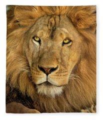 Male African Lion Portrait Wildlife Rescue Fleece Blanket