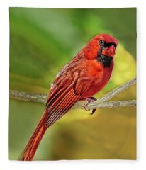 Male Cardinal Headshot  Fleece Blanket