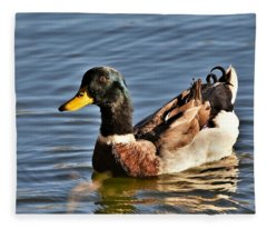 Mallard Duck Posing Fleece Blanket