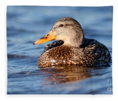 Mallard Duck Relaxing Fleece Blanket