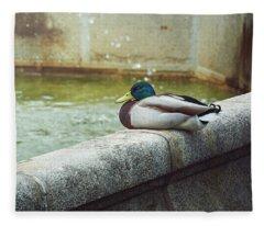 Mallard Resting On The Fountain Of The Fallen Angel In The Retiro Park - Madrid, Spain Fleece Blanket