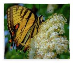 Manassas Butterfly Fleece Blanket