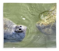 Manatee Love Fleece Blanket