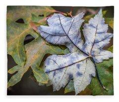 Maple And Oak Fleece Blanket