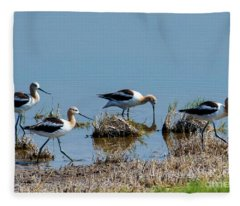 March Of The Avocets Fleece Blanket