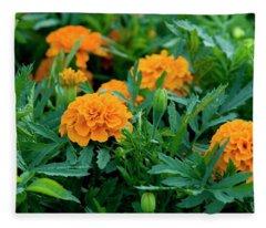 Marigolds Fleece Blanket