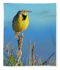 Fleece Blanket featuring the photograph Meadowlark by John De Bord