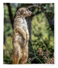 Meerkat Alert Fleece Blanket