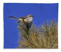 Mockingbird In White Pine Fleece Blanket