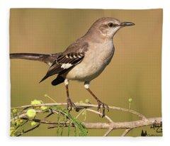 Mockingbird Up Close Fleece Blanket