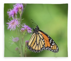 Monarch 2018-21 Fleece Blanket