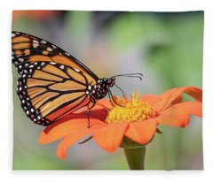 Monarch 2018-25 Fleece Blanket