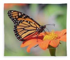 Monarch 2018-25 Fleece Blanket
