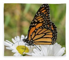 Monarch And Daisies Fleece Blanket