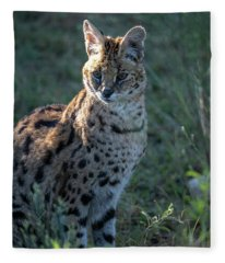 Morning Lit Serval Cat Fleece Blanket