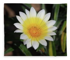 Morning's Glory Fleece Blanket