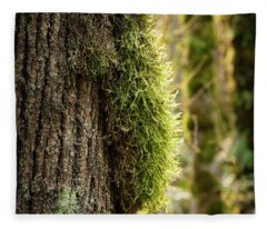 Fleece Blanket featuring the photograph Moss On Bark by Whitney Goodey