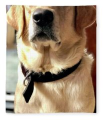 Labrador Dog Photographs Fleece Blankets