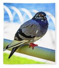 Mr. Pigeon Fleece Blanket