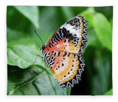 Multi Colored Butterfly Fleece Blanket