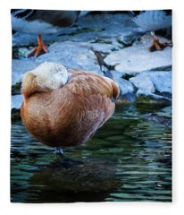 Napping At The Pond Fleece Blanket