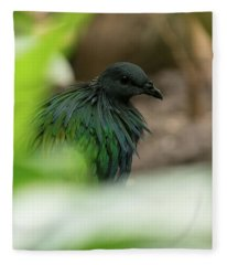 Nicobar Pigeon Fleece Blanket