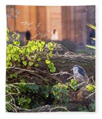 Night Heron At The Palace Fleece Blanket