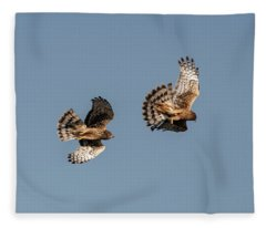 Northern Harriers 7 Fleece Blanket
