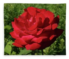 Oh The Blood Red Rose Fleece Blanket