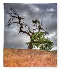 Old Oak Tree Fleece Blanket