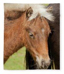 One Pony Fleece Blanket