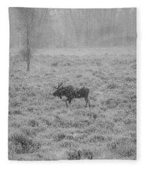 Onset  Fleece Blanket