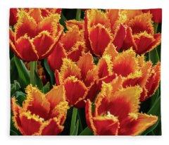 Orange Fringe Tulips Fleece Blanket