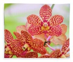 Orange Spotted Orchids Fleece Blanket