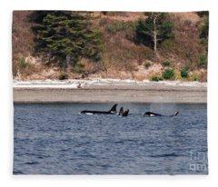 Orca J Pod Beach Pass Fleece Blanket
