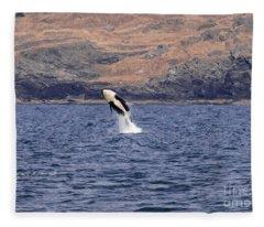 Orca Burst Fleece Blanket