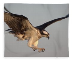 Osprey In Flight Fleece Blanket
