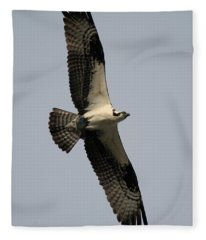 Osprey With Fish Fleece Blanket