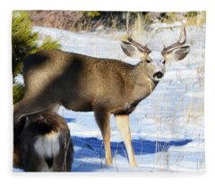 Out Of The Shadows Fleece Blanket