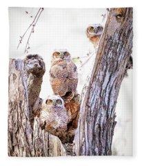 Owl Trio Standing Guard Fleece Blanket
