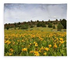 Owyhee Uplands Fleece Blanket