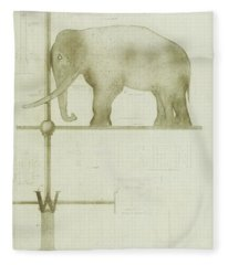 Pachyderm House, Philadelphia Zoo, Detail Of Weather Vane Fleece Blanket