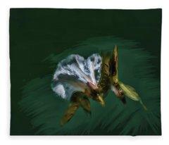 Painted Bindweed #i2 Fleece Blanket