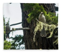 Pair Of Gray Jays Fleece Blanket