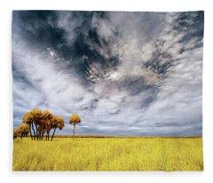 Palm Trees In Myakka Park Fleece Blanket