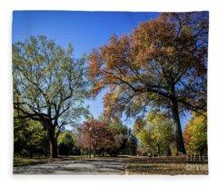 Piedmont Park Atlanta Ga 1 Fleece Blanket